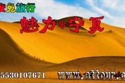 2019年魅力宁夏欢迎你15530107671。-旅游互动聚合社区