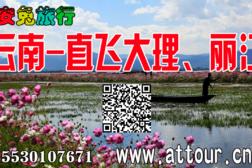 2019云南直飞大理丽江15530107671。-旅游互动聚合社区