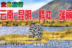 2019云南腾冲瑞丽芒市15530107671。-旅游互动聚合社区